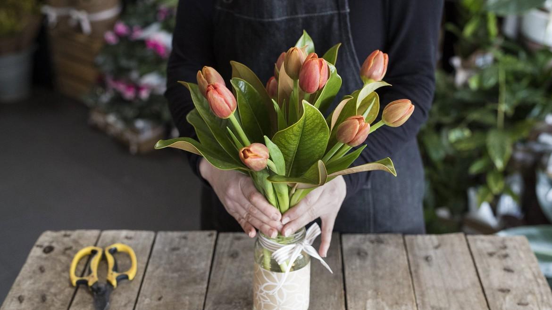 Spring Flowers in full bloom?